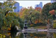 NEW YORK / Love New York