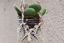 Home - Plants / by Christy Walcher