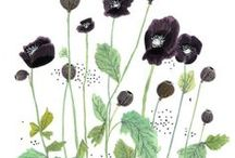 Spring inspiration 2014 / by Kylie Parry