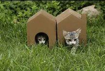 Nekohomu / Rascadores para gatos, cats scratchers made of cardboard https://www.kickstarter.com/projects/772491436/nekohomu