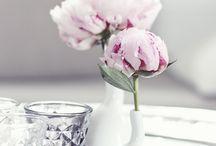 Flowers | Fleurs / Fleurs, flowers, pivoines, peonies