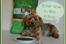GIVEAWAYS & CONTESTS / Check out our giveaways for pawsome prizes! / by Kirby the Dorkie