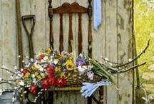 Gardening Tips & Yard Decor / Gardening tips & ideas to beautify the garden & yard.