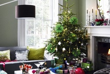 Holiday Decor / by Brianna Phillips