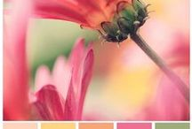 Inspiring Color Combos