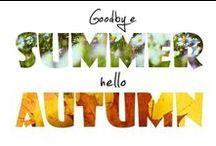 AUTUMN / Fall/autumn relates things