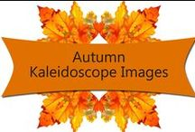 Autumn Kaleidoscopes / A collection of Autumn themed kaleidoscope designed with Dazzling Reflections Kaleidoscope software. / by Poppy Hill Designs