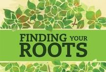 Genealogy / Finding your ancestors at the Stillwater Public Library, MN. Research our St. Croix collection. Atlases, Census, City Directories, Newspapers, Photos, Yearbooks