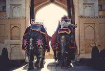 India / by Chimene van der Woude