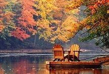 Autumn / by Betsy Jones