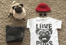 STUFF FOR PET LOVERS / Beautiful things for pet lovers.