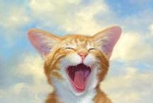 animal cat art