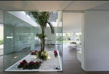 Landscaping Interior gardens / by Roberto Portolese