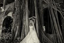 Destination Weddings / Destination Weddings by Eye Wander Photo - eyewanderphoto.com