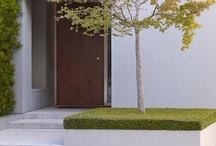 Gardens and backyards / by Allan Wilson