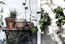 gardens &outdoor