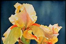 OIL & WATERCOLOR INSPIRATION / SUBJECTS TO PAINT