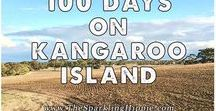 Kangaroo Island, Australia / Kangaroo Island, Australia is a beautiful nature getaway for those who want to leave the mainland of Australia and see some real wildlife and authentic living!