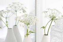 White / by Michaela B. Teuto Elfen