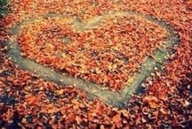 Autumn Leaves / Ideas for Autumn! / by Cat 💗