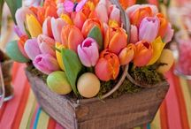Spring Flowers / Ideas for Spring! / by Cat 💗