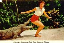 Vintage Florida  / Old Florida appreciation