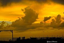 stormy skies / by Lynne Harrison