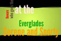 Poetry for Children: The Everglades / The Everglades - children's poems available on Amazon: http://goo.gl/7MEYg0