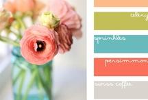 palettes de couleurs / color pallets