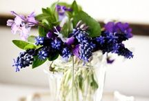 F l o r a l  B o t a n i c a / Flower arraignments displays and gardens