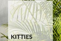 [Kitties]