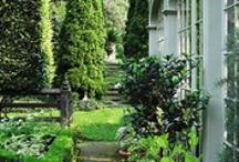 Gardening / by Cyndie Geries