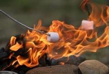 Cozy Campfires / by Lynn Wanner