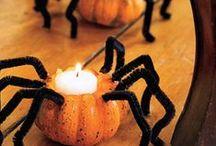 EenyMeeny Halloweeny / by Lacy Hatton