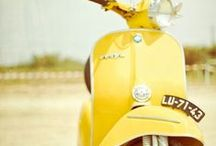 Wedding - Project Yellow