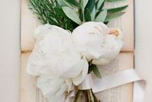 Wedding - Project White