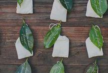 Wedding -  Project Green