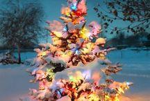 Holidays / by Jessica Talbot