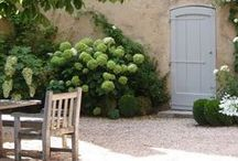 Provence/and Mediterranean / by Nancy Duncan