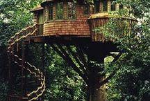 tree houses / by Nancy Duncan