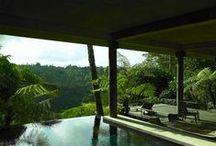 tropical modern / by Nancy Duncan