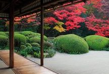 Japanese architecture and gardens / Japanese design / by Nancy Duncan