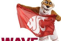 Cougar Spirit / by WSU Admissions