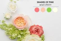 Colour Inspiration / by Sweet Love Cake Couture