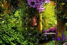 ✿⊱╮♥My Secret Garden✿⊱╮♥ / I love flowers and gardening.  It is so peaceful and relaxing to plant beautiful flowers and watch your garden change from year to year.