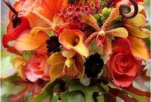Fall, Halloween &Thanksgiving / Decorating & recipes for autumn, Thanksgiving and Halloween