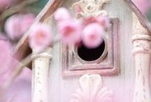 ♥:*´¨`*:♥Bird Cages & Bird Houses♥:*´¨`*:♥ / Quanit bird houses & cages for our little feather friends