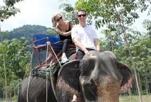 Thailand Romantic Travel & Honeymoons / Exotic places in Thailand for honeymoons and vacations / by Excellent Romantic Vacations