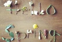 Seasonal Inspiration - Spring / Spring has sprung and we couldn't be more excited!