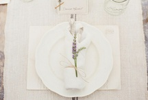 White / by Stacey Woods